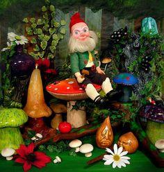 Mushroom Gnome sittin' in da mushroomy forest by splittyhead, via Flickr
