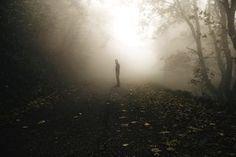 Mist by Valentino Grassi