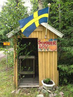 Svensk sommar / Swedish summer