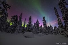 Lapland Magic by MikkoLonnberg aurora aurora borealis auroras finland forest landscape lapland night photography nightscape norther Scenery Pictures, Nature Pictures, Beautiful World, Beautiful Places, Beautiful Scenery, Wild Nature, Science And Nature, Night Skies, Pretty Pictures