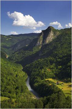 Montenegro. Tara River Canyon