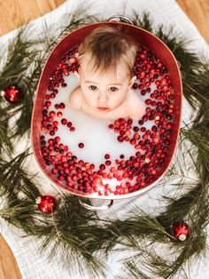 Most Popular Milk Bath Christmas Photography Ideas Milk Bath Photography, Toddler Photography, Newborn Photography, Photography Ideas, Milk Bath Photos, Bath Pictures, Baby Christmas Photos, Babies First Christmas, 1st Christmas
