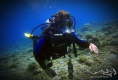 Fullface so relaxed...  #scuba #scubadiving #relaxedguideddives #padi #travel #explore #discover #curacao #fun #duiken #tauchen #diving #tripadvisor #cressi #oceanreef http://www.deepbluediving.org/dive-computers-vs-dive-tables/