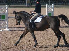 Neat: Why I Ride Without Stirrups