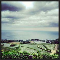 棚田の見える風景 #30jidori @ 東後畑棚田 instagram.com/p/aU4UOgmatc/