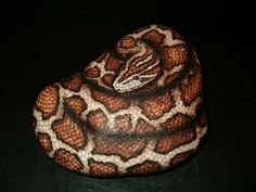 Image detail for -Hand Painted Rock Art Burmese Python Snake by amylenore on Etsy