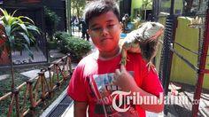 Isi Waktu Libur Lebaran Bersama Keluarga, Dua Pengunjung Ini Pilih Kebun Binatang Surabaya, Kenapa?