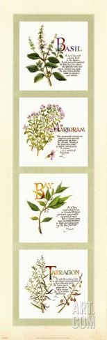 Kitchen Herbs I Print by G. Phillips at Art.com