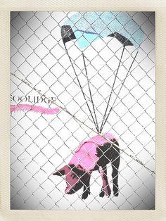 Parachute Pig COOLIDGE   Houston Graffiti photo by I-SEEN-IT RubenS, via Flickr http://flic.kr/p/bKXVLv