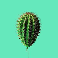 art direction | cactus balloon - surreal pop art by Tony Futura