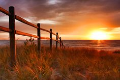Europe Bay Fence Sunrise  Ellison Bay, Wisconsin, Door County - As the sun rises over the waters of Lake Michigan, the golden rays of the sun reflect off a rustic fence as beach grasses sway softly in the cool morning breeze. With over two miles of sandy beach, Europe Bay is a popular location to swim, kayak, create sandcastles, and catch a breathtaking sunrise.