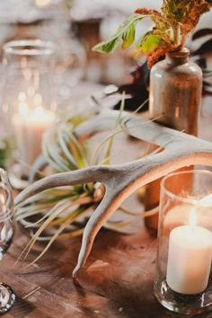 antler-infused centerpieces  Photography By / markbrooke.com, Floral Design By / hollyflora.com, Wedding Coordination By / orangeblossomspecialevents.com