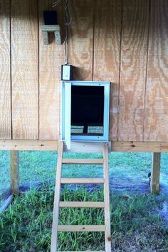 Learn how to snake-proof your chicken coop! - Capper's Farmer