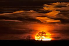 Photo Tree Silhouetted and Framed by the Sunset by Miles Wolstenholme on 500px