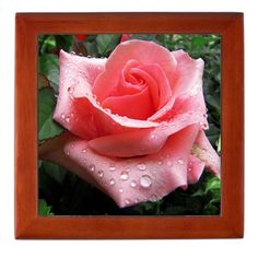 #Pink #Rose With #Dew #Keepsake #Box http://www.cafepress.com/+pink_rose_with_dew_keepsake_box,934258560
