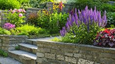 Garden ideas – Down hill /slope landscape ideas   Stone steps, beds and walls. Lovely  Amazing World