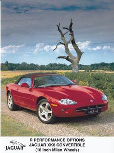 Jaguar Convertible R Performance Options (IAA, Jaguar Xk8 Convertible, Love Car, Car Manufacturers, Press Photo, Classic Cars, Automobile, Jaguar Cars, Auto Design, British