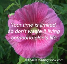 Inspirational quote about living your own life #inspiration #motivation.