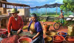 Gardens of Time   Santa Cruz Coffee Farm