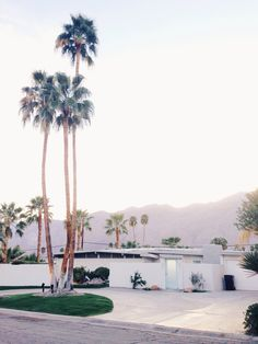 USA Travel Inspiration - palm springs, CA Oh The Places You'll Go, Places To Visit, Palm Springs Style, California Dreamin', Echo Park, To Infinity And Beyond, Land Scape, Strand, Palm Trees