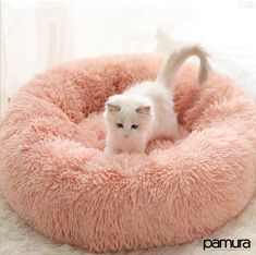 Soothing Calming Pet Beds For Dogs Cats – List Inspo Animals And Pets, Baby Animals, Cute Animals, Pet Beds, Dog Bed, Dog Sleep, Gato Gif, Dog Weight, Four Legged