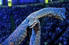 Gallery - Walking with Dinosaurs - The Arena Spectacular Stuff To Do, Things To Do, Good Things, Quicken Loans Arena, Walking With Dinosaurs, To Do This Weekend, California City, Win A Trip, Vacation Trips