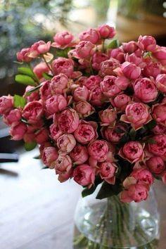 lovely bouquet of roses My Flower, Fresh Flowers, Beautiful Flowers, Deco Floral, Flower Aesthetic, Planting Flowers, Floral Arrangements, Wedding Flowers, Bloom