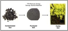 Rice University pyrolysed oil-contaminated soil to reduce total petroleum hydrocarbons below US federal standards, while leaving beneficial carbons. While this technology may not be used to grow food, they demonstrated success growing lettuce, which is recognized to be sensitive to hydrocarbon contamination.