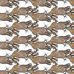 Illustration Image - Rabbits - North Brunswick New Jersey United States