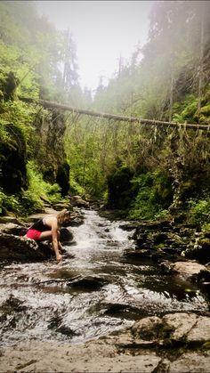 - Silje Bjørnstad - – Oppskrift lavkarbo: Blomkålpure med entrecote og bearnaisesaus Nature, Travel, Voyage, Viajes, Traveling, The Great Outdoors, Trips, Mother Nature, Tourism