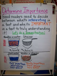 Life in 4B...: non-fiction reports  Determining importance mini-lesson using noodles and a strainer.