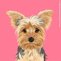 Awesome stuff for you and your dog. Quality products featuring original illustrations, pet portraits with tons of character, and Bernese Mountain Dog gifts. Dog Illustration, Digital Illustration, Illustrations, Baby Animal Drawings, Cute Backgrounds, Gifts For Pet Lovers, Copics, Dog Portraits, Dog Art