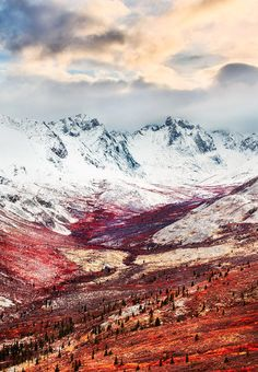 Tombstone Mountains, Yukon Territory, Canada