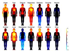 Love is the strongest of all emotions. A team of researchers has created heat maps of where and how emotions are experienced in the human body. Shame and anxiety—just like love and depression—are experienced all over the body. Oddly enough surprise doesn't look that different from shame and envy.