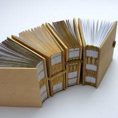 Kate Bowles Books : Adventures with Allium Cepa cont. ......