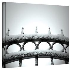 Mark Ross Only Opens In Wrapped Canvas Art, Size: 24 x 32, Black