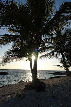 Akumal, Mexico  Riviera Maya- want to have dinner here