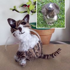 little cat made by wool
