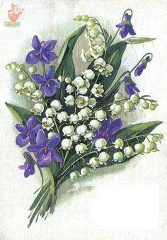 I love violets AND lilies of the valley! Illustration Blume, Botanical Illustration, Vintage Pictures, Vintage Images, Vintage Cards, Vintage Postcards, Vintage Flowers, Vintage Floral, Flower Prints