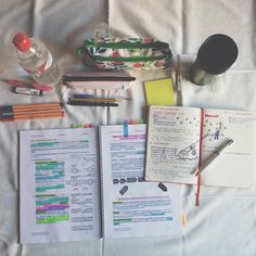 studylikeadoctor: I love studying in the living room