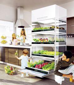 Il Kitchen Nano Garden, è la versione aggiornata del concept ideato in precedenza, dai designer del reparto Engineering della coreana Hyund...