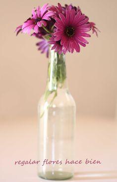 regalar flores hace bien