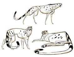 Martin Wittig: Big Cats
