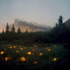 Iluminação criativa - Foto Arte de Barry Underwood