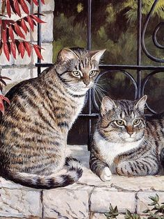 PERSIS CLAYTON WEIRS::❤my gray tabby cats❤