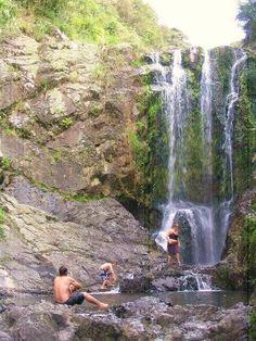 Piroa Falls Walk New Zealand Travel, Waterfall, Walking, Activities, Outdoor, Outdoors, Waterfalls, Walks, Outdoor Games