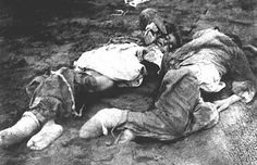 Image result for armenian genocide photos