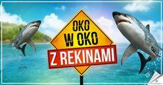 Oko w oko z rekinami w Na Ryby http://grynank.wordpress.com/2014/08/26/oko-w-oko-z-rekinami-w-na-ryby/ #gry #nk #naryby