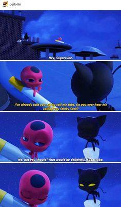 miraculous chat noir pass out Ladybug E Catnoir, Ladybug Und Cat Noir, Ladybug Comics, Tikki Y Plagg, Miraculous Ladybug Fan Art, Miraculous Ladybug Plagg, Plagg Miraculous, Adrien Y Marinette, All Meme
