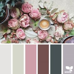Ideas Vintage Wedding Colors Palette Design Seeds For 2019 Color Palette For Home, Spring Color Palette, Colour Pallette, Spring Colors, Colour Schemes, Color Combos, Spring Flowers, Design Seeds, Color Collage